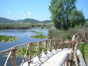 Parco di Colfiorito palude